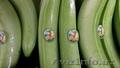поставки бананов от производителя - Изображение #2, Объявление #481406